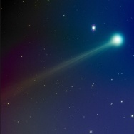 Comet ISON on Nov. 14.
