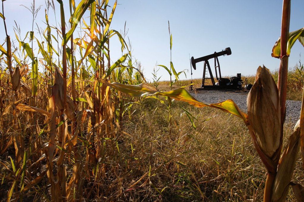 An oil well sits in the middle of a corn field October 3, 2008 near Norris City, Illinois. Crude oil production in Illinois has been steadily declining since its peak in the mid-1980s. The state is now one of the nation?s top ethanol producing states.
