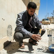 A Syrian man collects and bags the body of a dead bird, reportedly killed by a suspected toxic gas attack in Khan Sheikhun, in Syrias northwestern Idlib province, on April 5, 2017.