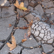 california drought mud