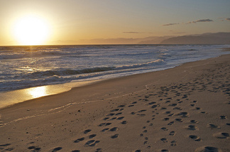 McGrath State Beach, located in Oxnard, Calif., is on the list of potential state park closures.
