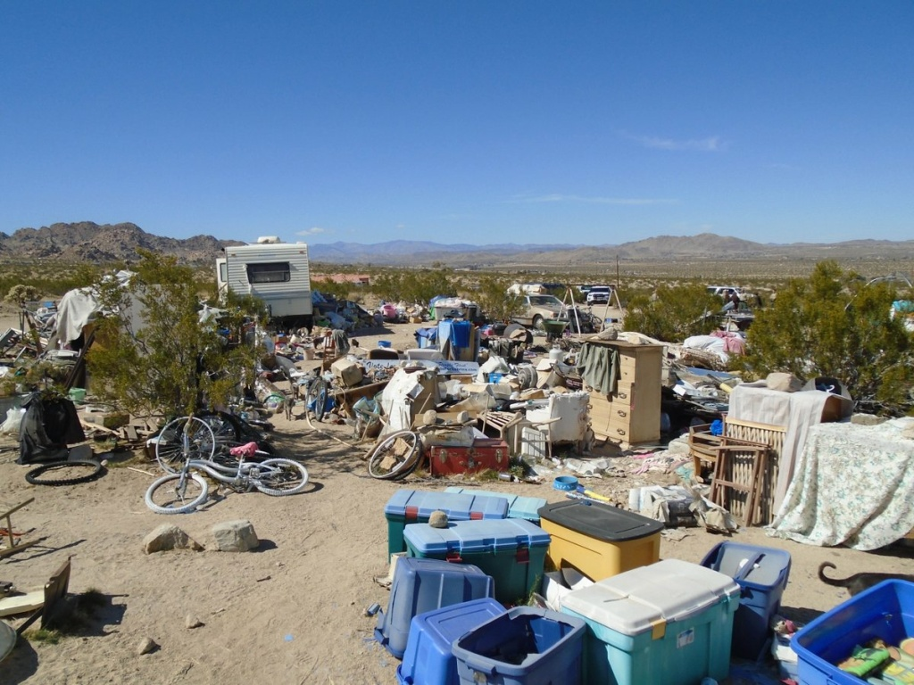 Joshua Tree family lived in filthy desert hovel, authorities