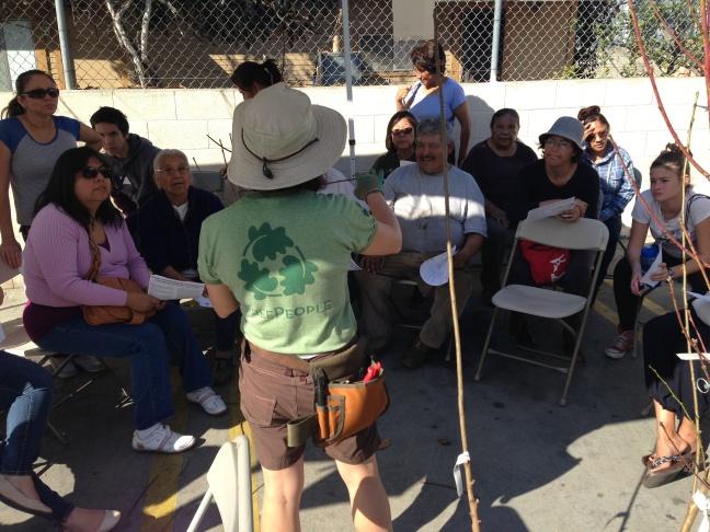 Linda Eremita, from the nonprofit Tree People, gave a workshop on tree maintenance.