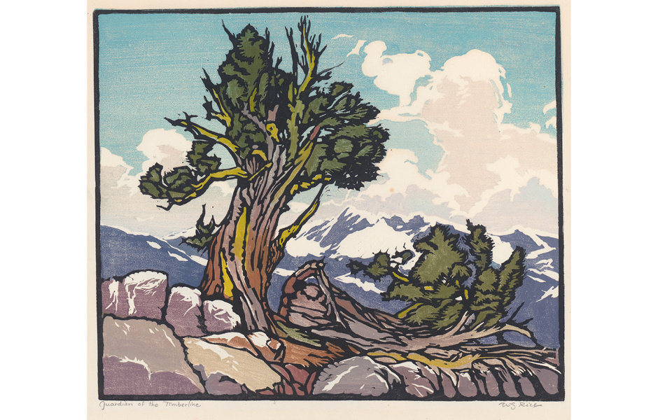 Guardian of the Timberline, ca. 1924. Block printed in colors on paper, 12 ⅛ x 14 ⅜ inches. Collection of Roberta Rice Treseder.