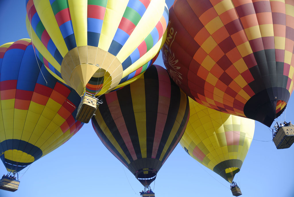 The Temecula Valley Balloon and Wine Festival in 2008.