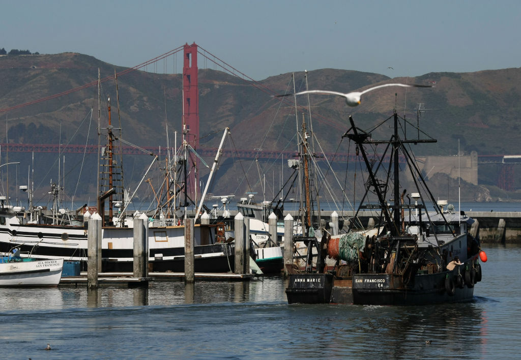 A fishing boat makes its way through the harbor near pier 45 April 11, 2008 in San Francisco, California.