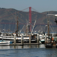 West Coast Salmon Fishing Season Canceled