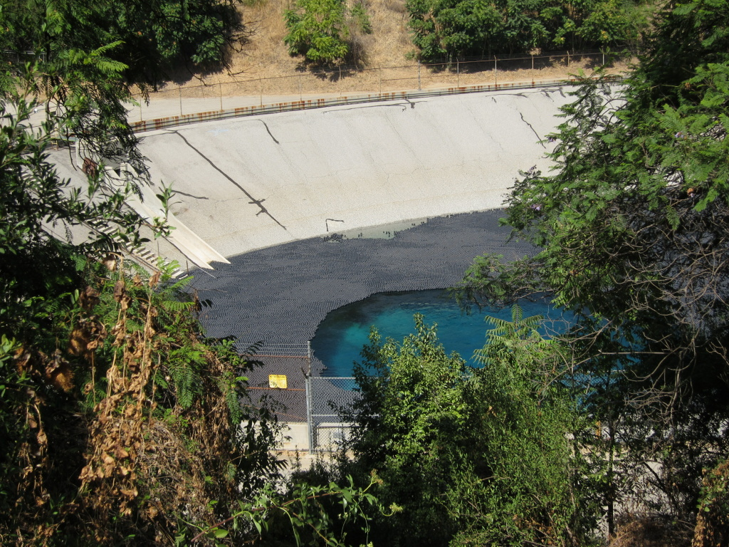 Black plastic balls are a stopgap measure. LADWP is deciding on a long-term solution at Elysian Reservoir.