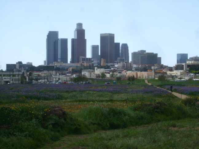 The 34-acre Los Angeles State Historic Park is tucked between the Metro Gold Line tracks and an old industrial area  just north of El Pueblo, the historic founding center of Los Angeles.
