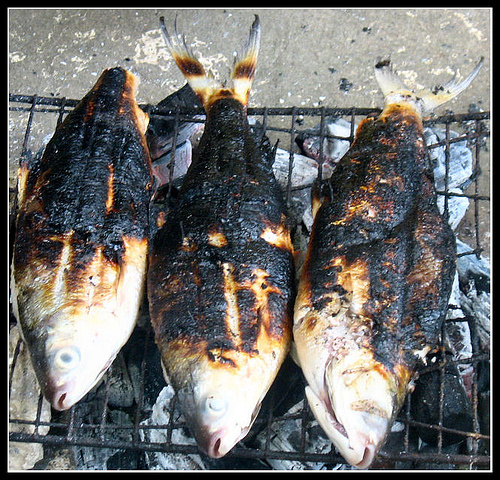 Grilled Hawaiian fish over a pit.