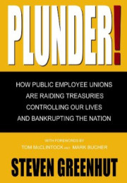 Plunder: How Public Employee Unions Are Raiding Treasuries, Controlling Our Lives and Bankrupting the Nation