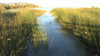 Conservationists disagree over a $7-million lagoon restoration project in Malibu.