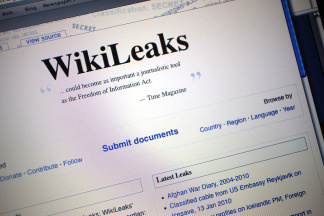 Wikileaks is public (domain) enemy number one