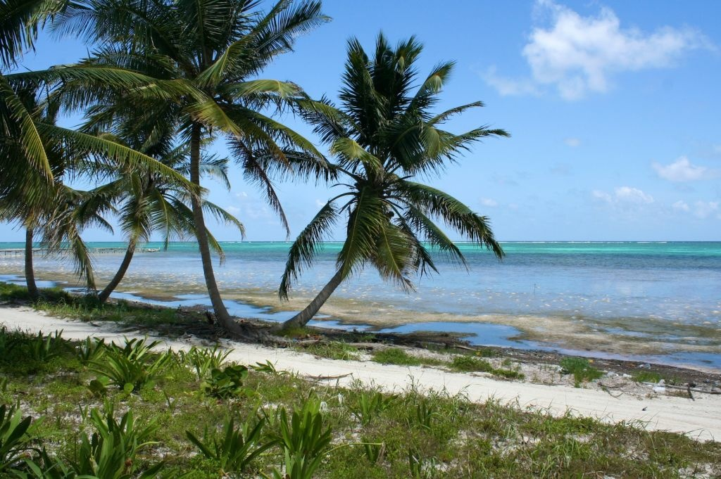 Halfway up Ambergris Caye, Belize, about eight miles north of San Pedro. Gregory Faull was reportedly murdered in this area at his home.