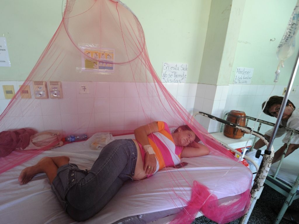 Dengue fever patients are treated in a hospital in Asuncion, Paraguay on January 16, 2013.