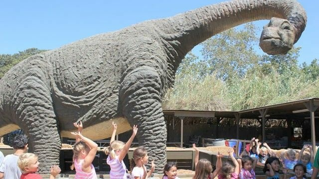 Carolyn Franks's bronotsaurus status sits in a children's petting zoo.