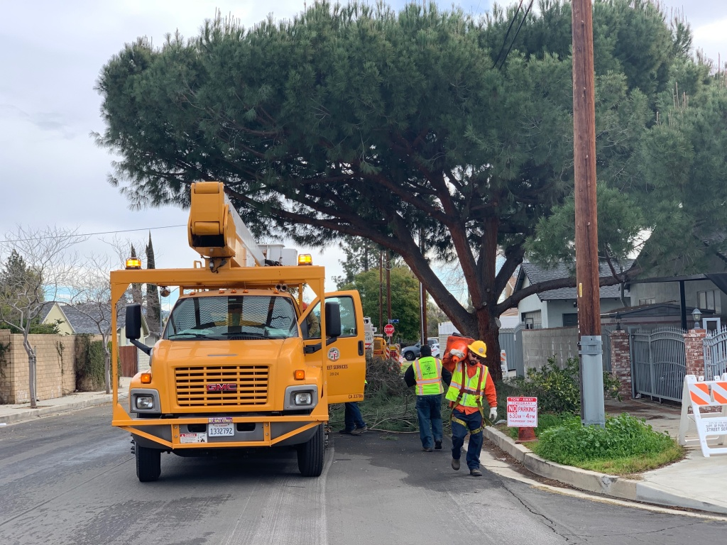 City workers trim and clear tree branches in a residential neighborhood in Canoga Park.