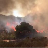 Mesa Fire