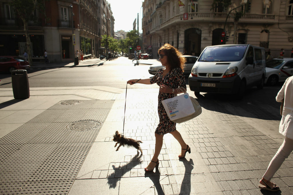 A woman walks her dog along the affluent shopping street of Calle de Serrano on July 4, 2012 in Madrid, Spain.