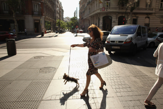 WOMAN WALKS DOG DOWN THE AVENUE