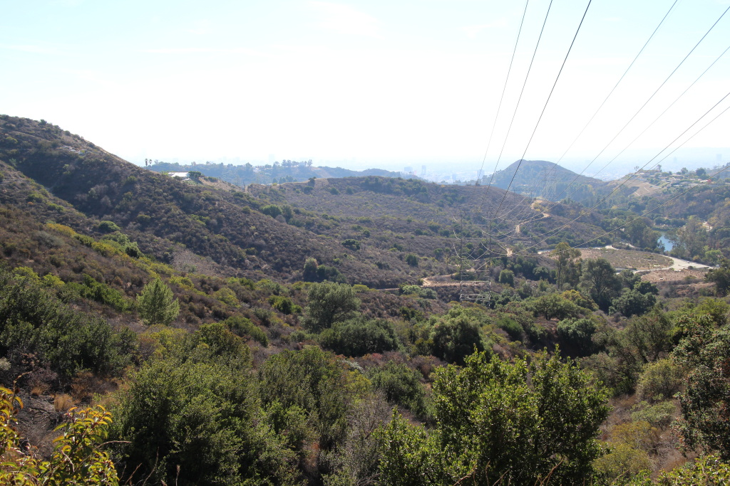 File: Undeveloped land to the west of Griffith Park may receive new trails if the Los Angeles Department of Water and Power agrees to lease the property to the Los Angeles City Department of Recreation and Parks. The land is considered to be a vital wildlife corridor into the Santa Monica Mountains.