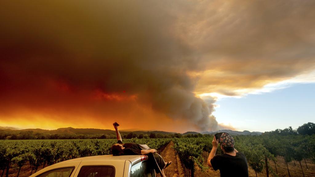 Northern California's LNU Lightning Complex fire burns on Thursday.
