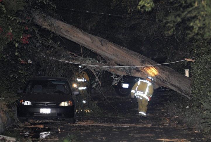 Fallen tree crushes two cars at the Providence Christian College