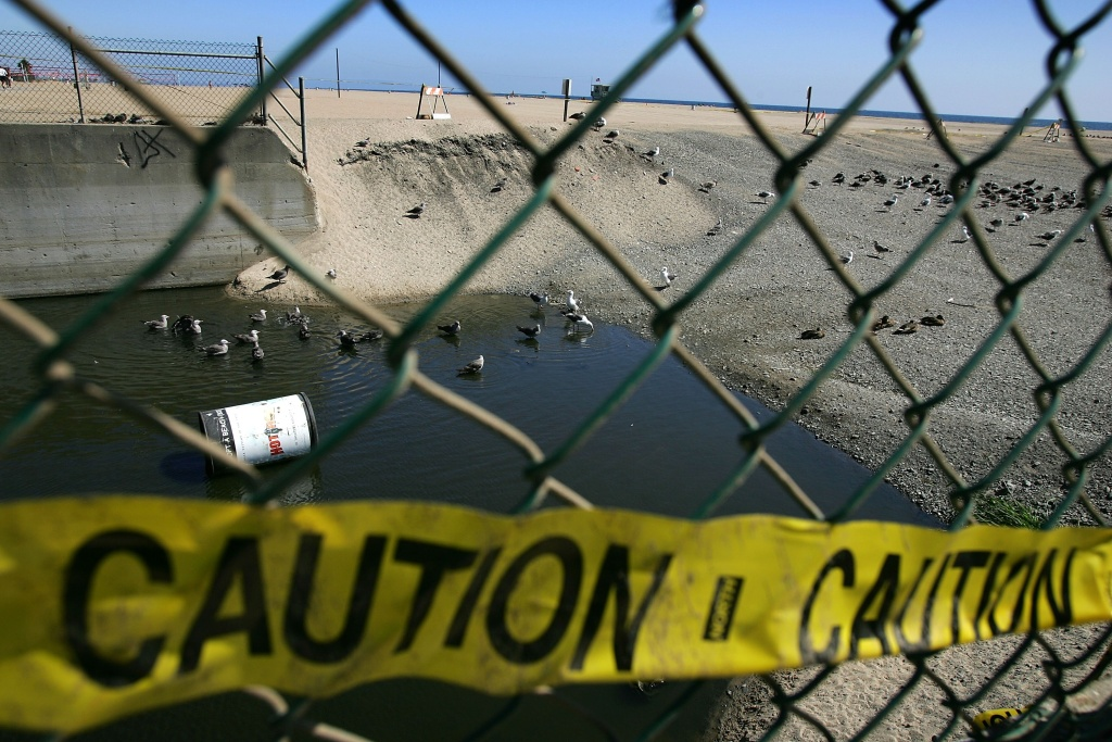 Birds bathe near a trash can where the public is warned to stay out of the water in an area harboring high bacteria levels.