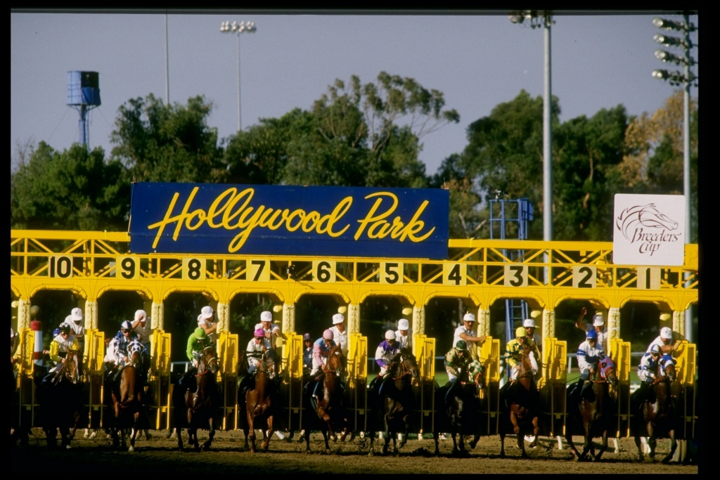 Nov 1987: General view of the start of the seventh race of the Breeders'' Cup at Hollywood Park Racetrack in Inglewood, California.