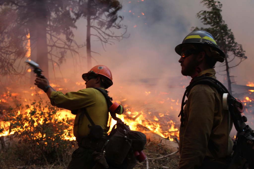 In this photo provided by the U.S. Forest Service, fire crew members stand watch near a controlled burn operation as they release a very pistol, as they fight the Rim Fire near Yosemite National Park in California, Monday, Sept. 2, 2013.