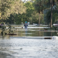 People wade through a flooded neighborhood in Bonita Springs, Florida, northeast of Naples, on September 11, 2017, after Hurricane Irma hit Florida.
