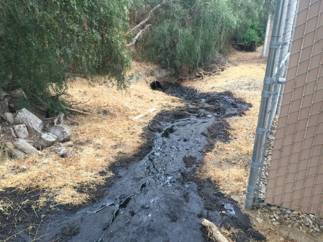An oil spill that released thousands of gallons of crude oil was discovered Thursday in Ventura.