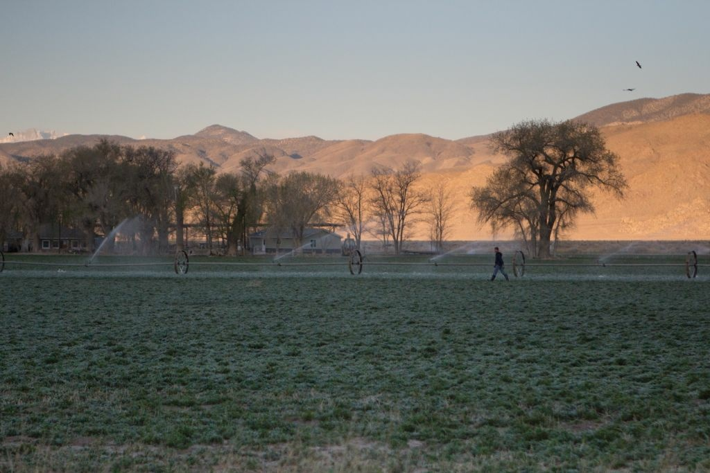 Deep Springs sits in California's high desert. A current student body of 28 men runs a cattle ranch and an alfalfa farm, as well, as a mostly organic garden.