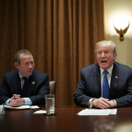 President Donald Trump meets with Democratic and Republican members of Congress, including Rep. Josh Gottheimer (L) (D-NJ) and Rep. Tom Reed (R) (R-NY), in the Cabinet Room of the White House on September 13, 2017.