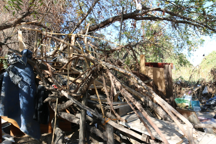 A pile of debris left over at Whittier Narrows Nature Center in South El Monte.