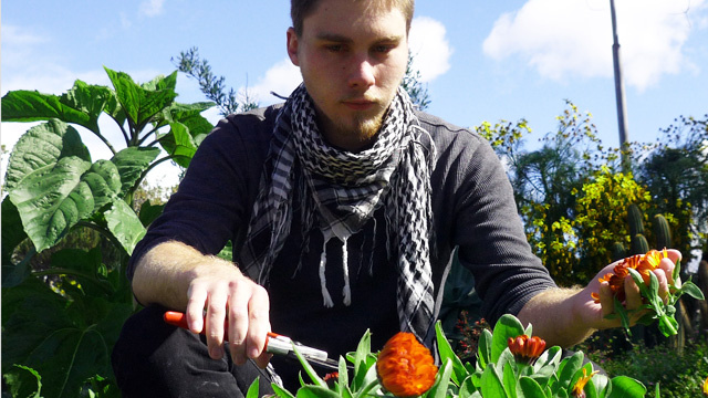 Calder Katz at The Learning Garden