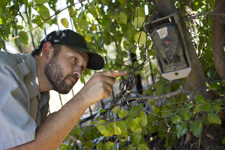 Justin Brown, an ecologist with the National Parks Service, installs a trail camera inside Vista Hermosa Natural Park near downtown Los Angeles on Wednesday, April 29, 2015.