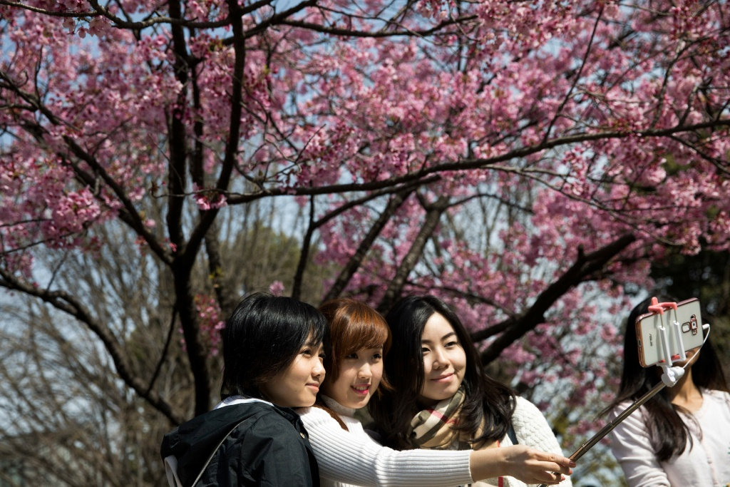 Women take a selfie with cherry blossoms in a park in Tokyo on April 6, 2017. Japan's cherry blossom season kicks off boozy parties across the country and draws tourists from far and wide.
