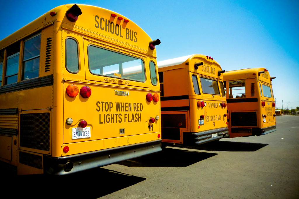 An image of three school busses.