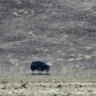 A mirage makes a car appear as if it's flying as a heat wave spreads across the American West on June 30, 2013 in Death Valley National Park, California.