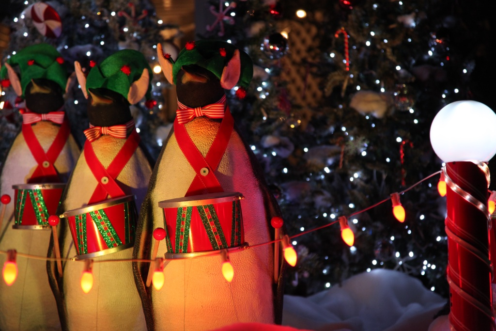 Penguins that are definitely not sentient in any way wear whimsical elf hats and adorable toy drums.