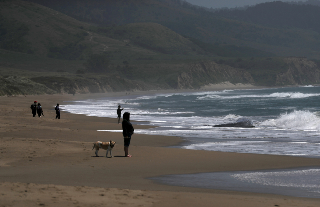 Beachgoers on the beach at Limantour Beach on May 23, 2019 in Point Reyes Station, California.