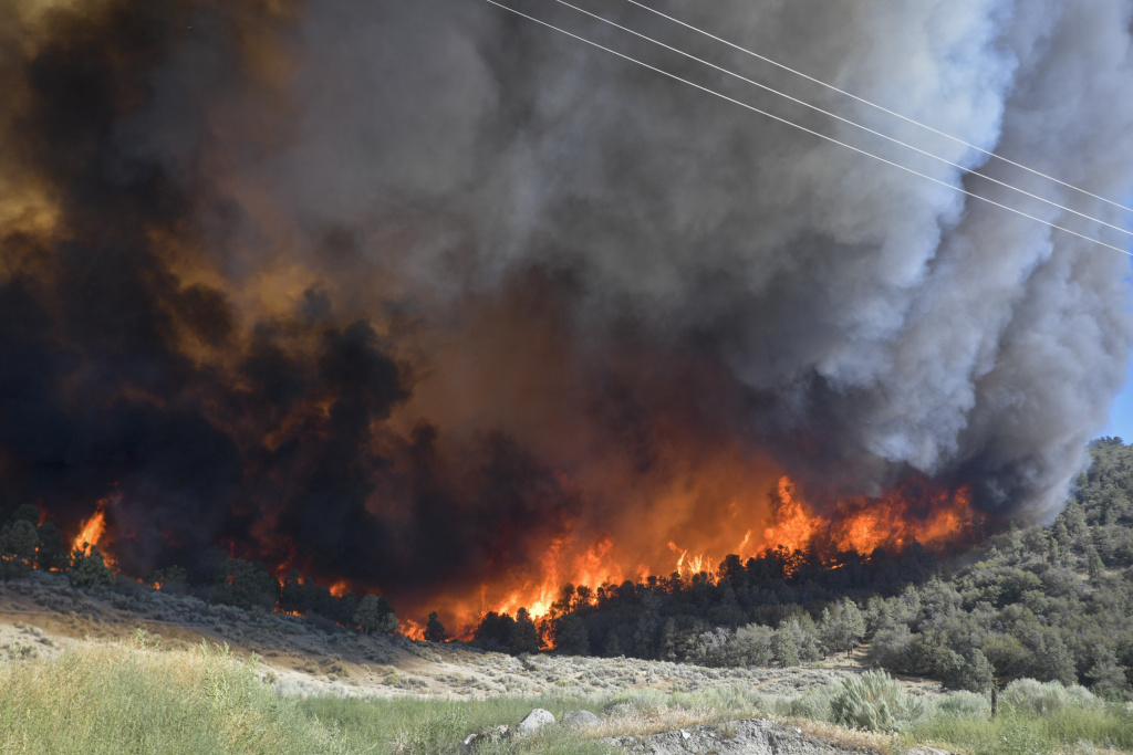 showing extreme fire behavior - 1024×683