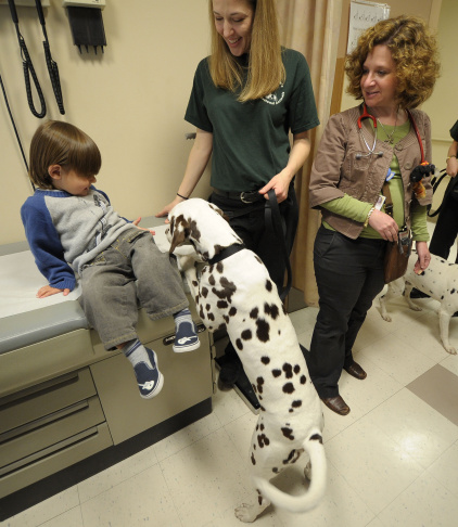 "Dogs From ""101 Dalmatians The Musical"" Visit Hospitalized Children"