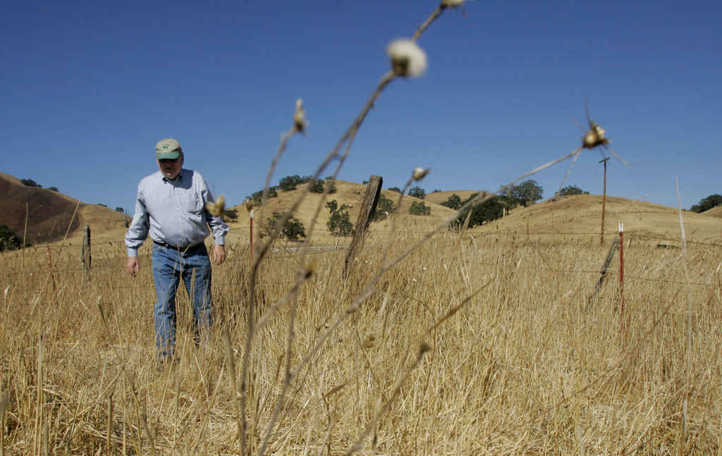 Joe Gonzales walks on his ranch in Gilroy, Calif., Tuesday, Oct. 14, 2008. California's worst drought in decades is forcing the state's cattle ranchers to downsize their herds because two years of poor rainfall have ravaged millions of acres of rangeland used to feed their cows and calves.