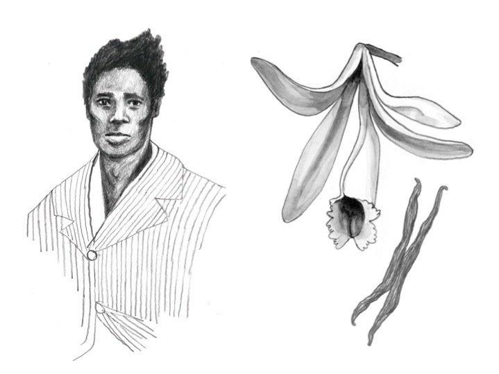 Slave Edmond Albius and a vanilla plant: