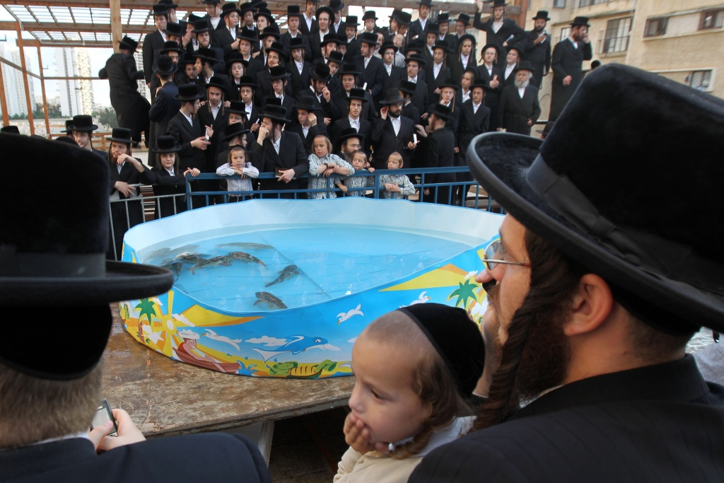 Ultra-Orthodox Jews pray near a plastic pool filled with water and live fishes in as they perform the Tashlich ritual in the Israeli city of Bnei Brak on October 06, 2011. Tashlich is a ritual during which believers cast their sins into the water and the fish, and it is performed one day before the Day of Atonement or Yom Kippur. Yom Kippur, the most solemn day in the Jewish calendar, is a 25-hour period of fasting and intense reflection and prayers where the central theme is atonement.