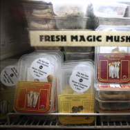Magic mushrooms are displayed in a refrigerated case at Inne