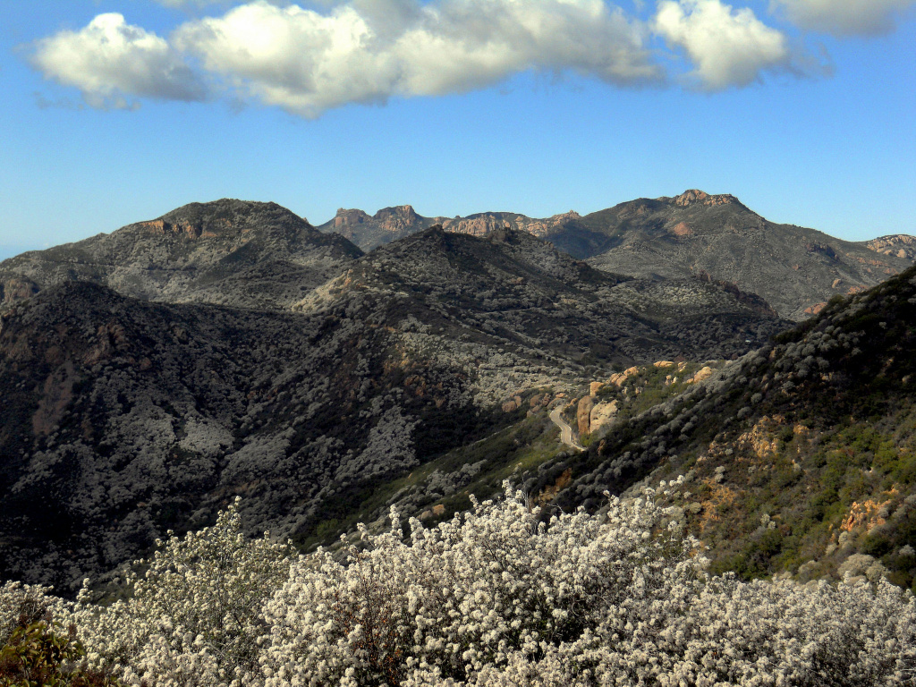 A view of Boney Mountain along the Backbone Trail in the Santa Monica Mountains National Recreation Area.