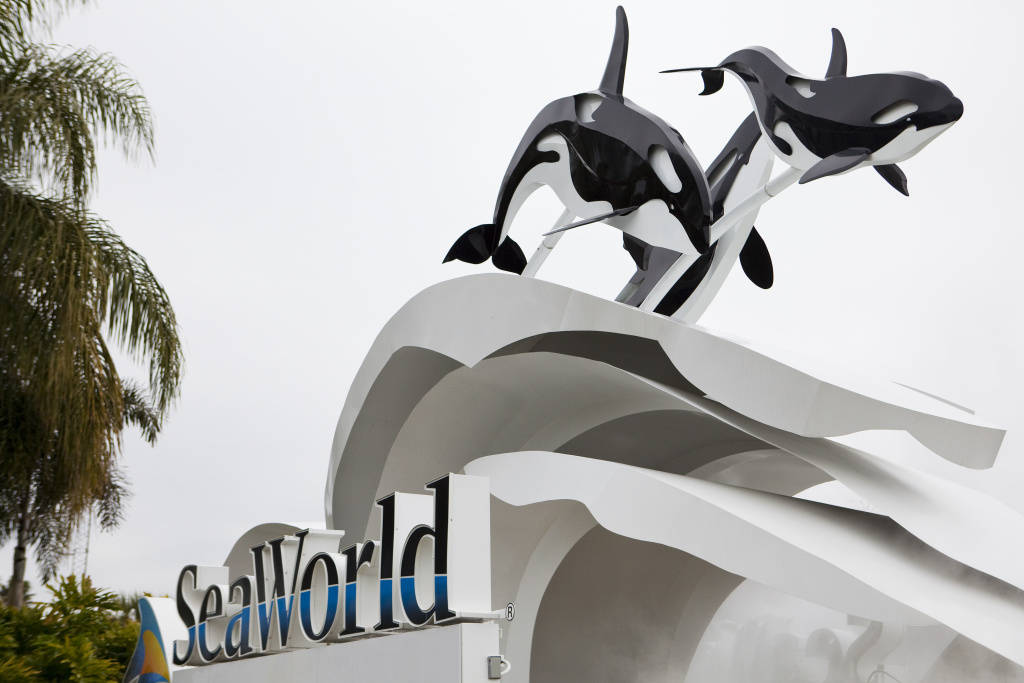 Plagued by controversy and sharp drops in attendance and stock prices, SeaWorld Inc. announced that CEO Jim Atchison would step down.